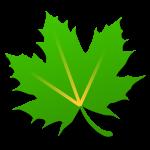 绿色守护 Greenify v4.1 解锁捐赠版